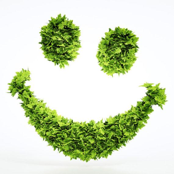 Editorial Design waste2energy – KOCHUNDSIMON